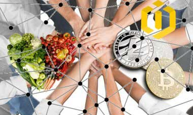 Blockchain, A Big Reformation from South Korea to IBM in Food Industry