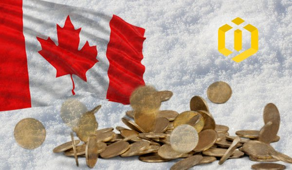 Biggest Canadian Crypto Exchange Users' Assets Frozen